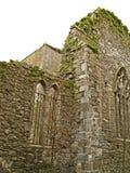 st för dominick s för 02 abbey Arkivbilder
