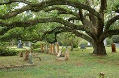 ST FRANCISVILLE, LUIZJANA, usa - 2009: Grobowowie i dębowi drzewa przy cmentarzem lokalizować w gracja kościół episkopalnym obraz stock