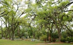 ST FRANCISVILLE, LUIZJANA, usa - 2009: Grobowowie i dębowi drzewa przy cmentarzem lokalizować w historycznym gracja kościół episk obraz royalty free