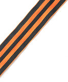 St. George ribbon Stock Image