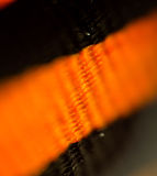 St. George Ribbon Macro Stock Images