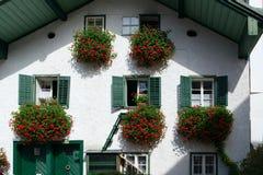 ST GILGEN, SALZBURG/AUSTRIA - 15 SEPTEMBER: De rode Geraniums hangen Stock Fotografie