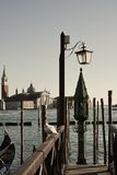 St. Giorgio and seagull in Venice, Italy Royalty Free Stock Photography