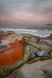 St Helens Tasmanien 1 Royaltyfria Foton