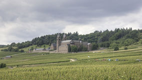 St. Hildegard en el viñedo, Rheingau de Abtei Foto de archivo