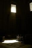 St interna pregante Peter Church, cattedrale del Vaticano, Roma della gente Immagini Stock
