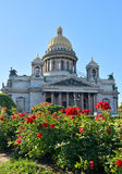 St. Isaac's Cathedral on a background of red roses on the square Royalty Free Stock Image