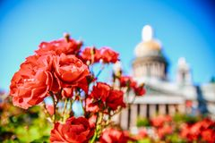 St. Isaac`s Cathedral view summer Stock Photography