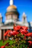 St Isaac ` s widoku Katedralny lato Zdjęcie Royalty Free