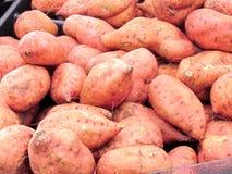St Jacobs村庄白薯2013年 免版税库存图片