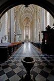 St. James Kerk in Brno royalty-vrije stock afbeelding