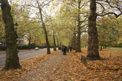 St. James Park, London in the fall Stock Image