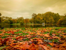 St. James's Park Lake in Autumn Royalty Free Stock Photo