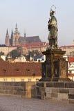 St John di Nepomuk a Praga Immagini Stock Libere da Diritti