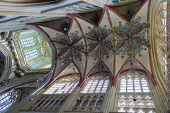 Free St. John S Cathedral, S-Hertogenbosch, Netherlands Royalty Free Stock Photography - 74088827