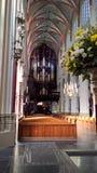 St John s domkyrka, s-Hertogenbosch, Nederländerna Arkivbild