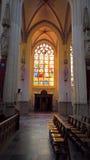 St John s domkyrka, s-Hertogenbosch, Nederländerna Arkivfoton