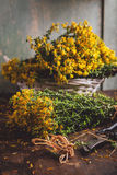 St. John's wort (Hypericum). Dried, on a wooden table Royalty Free Stock Images