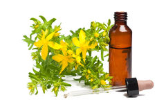 St. John's wort. Isolated with dropper and bottle Royalty Free Stock Images