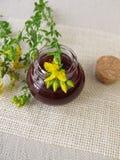 St. John's wort oil in bottle Stock Photos