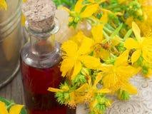 St John's wort oil Royalty Free Stock Images