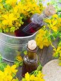 St John's wort oil Royalty Free Stock Image