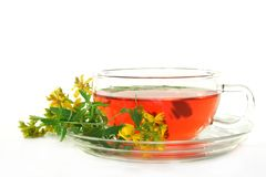 St. John's Wort Tea. A cup of St. John's Wort Tea with fresh flowers Royalty Free Stock Photo