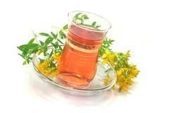 St John's Wort tea Stock Photo
