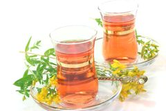 St John's Wort tea. A cup of St John's Wort tea with fresh flowers on a white background Stock Photos