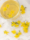 St john's wort tea Royalty Free Stock Images