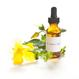 St. John's Wort tincture or extraction Stock Image