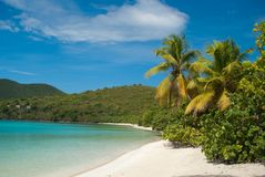 St John - USVI. Cinnamon Bay beach on Saint John, United States Virgin Island Royalty Free Stock Photography