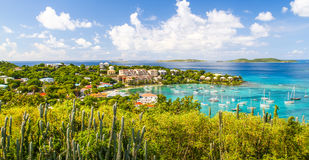St. John, USVI - Cactus Hillside Above Cruz Bay Royalty Free Stock Photo