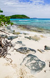 St. John, USVI - Hawksnest Beach Royalty Free Stock Images