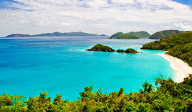 St. John, USVI - louro Vista do tronco Foto de Stock Royalty Free