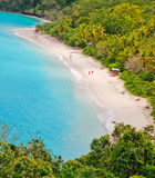 St. John, USVI -Trunk Bay Beach. A gorgeous view from above world famous Trunk Bay on the island of St. John, in the US Virgin Islands. Trunk Bay is often listed Royalty Free Stock Photos