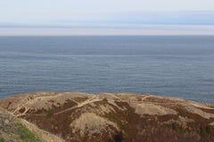 ST Johns, νέα γη, Καναδάς Στοκ φωτογραφίες με δικαίωμα ελεύθερης χρήσης