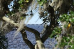 St Johns River in Florida lizenzfreies stockfoto