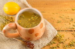 St Johns wort tea and surrounded by dried plants Stock Photo