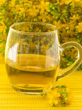 St Jonn's wort tea Royalty Free Stock Photo