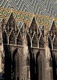 st katedralni stephens Vienna Obraz Stock