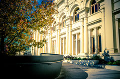 St. Kilda Town Hall and beautiful yellow tree growing nearby in Royalty Free Stock Photography