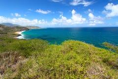 St Kitts Kustlijn royalty-vrije stock foto's