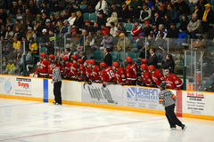 St. Lawrence Bench in NCAA Hockey Game Royalty Free Stock Images