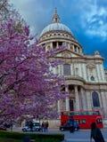 st london Паыля s собора Стоковая Фотография