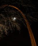 St Louis łuk przy nocą Zdjęcie Stock