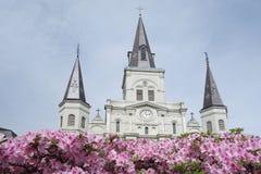 St Louis Cathedral i Jackson Square i New Orleans den franska fj?rdedelen royaltyfria bilder