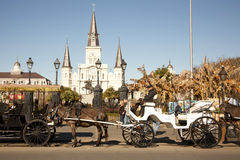 St Louis Cathedral with Mule Carriages Stock Images