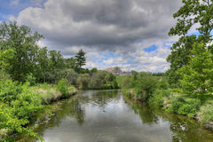 St Louis lasu park Obraz Royalty Free