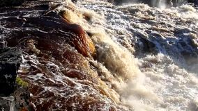 St Louis River in Jay Cooke State Park in Minnesota stock footage